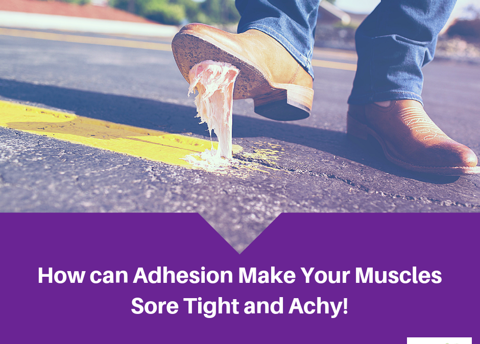 How Does Adhesions Make Your Muscles Sore, Tight, and Achy